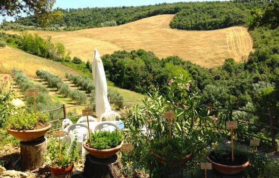 App. Maria - vista dalla terrazza-giardino foto A